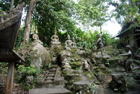 Tanim Magic Garden